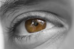 глаз Стоковые Фото