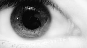 глаз bw стоковые изображения rf
