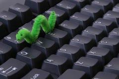 глист компьютера Стоковая Фотография RF