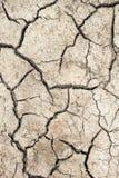 Глобальное потепление, засуха Стоковые Изображения