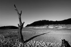 глобальное потепление засухи Стоковые Фотографии RF