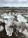 глобальное потепление Ледистые дрейфующие льды mealtiing на пляже Ледники туристической достопримечательности исчезая Стоковые Фотографии RF