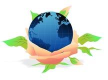 глобус цветка Стоковое Изображение
