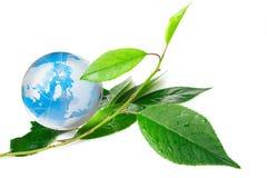 глобус eco принципиальной схемы стоковые изображения