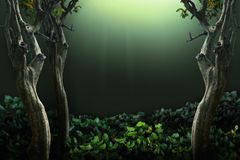 глубокая предпосылка леса Путь изолированный и клиппирование стоковое изображение