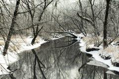 глубокая тень Стоковое Фото