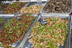глубокие зажаренные насекомые Стоковые Изображения