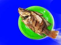 Глубокие зажаренные рыбы на зеленом блюде, предпосылке голубого экрана Стоковые Изображения