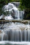 Глубокий водопад пущи Стоковое фото RF