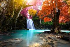 глубокий водопад пущи стоковая фотография rf