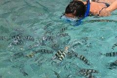 глубоко - женщина зеленого моря snorkelling Стоковые Изображения