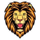 Гнев льва Стоковые Изображения