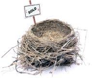 гнездй имущества 08 птиц реальное Стоковая Фотография RF
