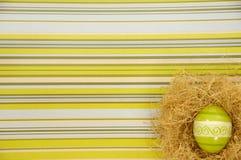 гнездй пасхального яйца Стоковые Фотографии RF