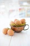 Гнездй пасхи год сбора винограда Стоковое Фото