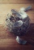 Гнездй пасхи с запятнанными пер Стоковое Изображение RF