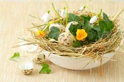 Гнездй пасхи с яичками триперсток Стоковые Изображения
