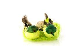 гнездй пасхи Стоковая Фотография
