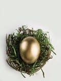 гнездй яичка золотистое серое Стоковые Фотографии RF