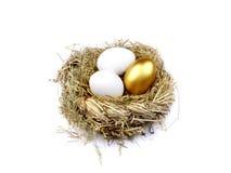 гнездй яичка золотистое Стоковое Фото