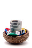гнездй яичка играя в азартные игры Стоковые Изображения RF