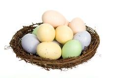 гнездй 12 яичек Стоковое Фото