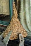 гнездй s шершня Стоковая Фотография RF