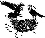 Гнездо вороны людей Стоковые Изображения