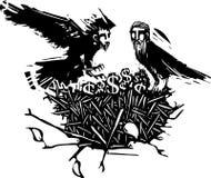 Гнездо вороны финансов людей Стоковая Фотография RF