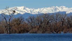 Гнездо и горы Eagles стоковая фотография rf