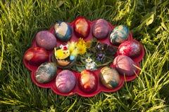 Гнездо пасхи с покрашенными яичками Стоковая Фотография