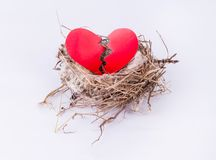 Гнездо птицы при треснутое сердце изолированное на белой предпосылке Стоковая Фотография RF