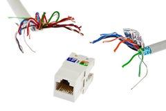 Гнездо сети RJ45 UTP женское погнано 2 кабелями которое выглядеть как щупальца изверга, белой предпосылкой UTP/STP стоковое изображение