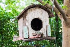 Гнездо ` s птицы красивый дом Стоковые Фото