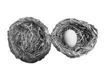 2 гнезда и одно яичко стоковое изображение