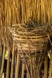 Гнезда цыпленка, листья коричневого цвета, крыша, бамбук Стоковая Фотография RF