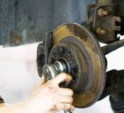 Гнезда для ремонта двигателя Стоковые Фотографии RF
