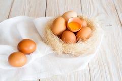 гнездй коричневых яичек Стоковое Фото