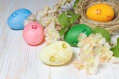 гнездй пасхального яйца Стоковые Изображения