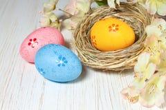 гнездй пасхального яйца Стоковые Изображения RF