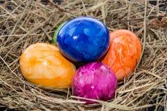 Гнездй пасхи с яичками Стоковое Фото