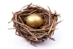 гнездй яичка золотистое Стоковые Изображения RF