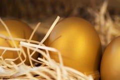 гнездй яичка золотистое Стоковая Фотография
