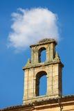 Гнездо аиста на башне церков в Саламанке Стоковые Изображения RF