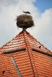 Гнездо аиста на крыше Стоковые Изображения