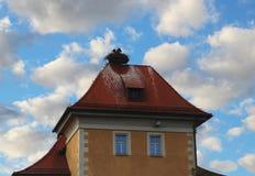 Гнездо аиста с аистами на старом здании, облак-небом Стоковые Фотографии RF