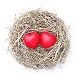 Гнездо влюбленности Стоковая Фотография