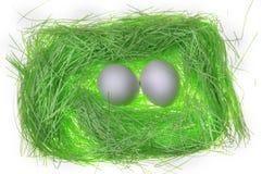 Гнездо зеленой книги Стоковые Фотографии RF