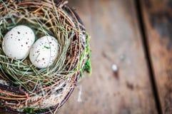 Гнездо пасхального яйца на деревенской деревянной предпосылке Стоковые Изображения