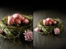Гнездо пасхального яйца Стоковая Фотография RF